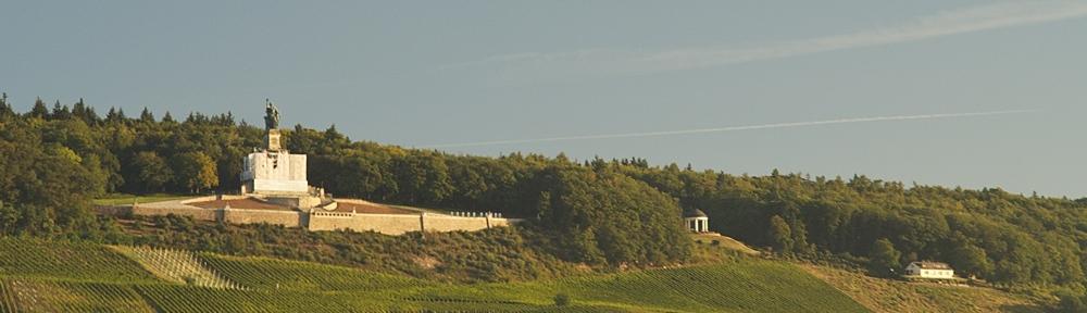Fensterblick #17 -Niederwalddenkmal